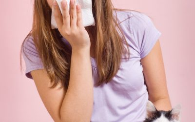 Reducing Pet Allergies