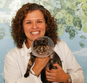 Picking a Veterinarian for Your Pet
