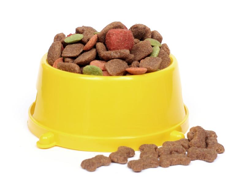 Pet Food 101