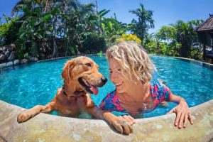 Keep your pup safe this summer with Longwood's summer pet safety tips.