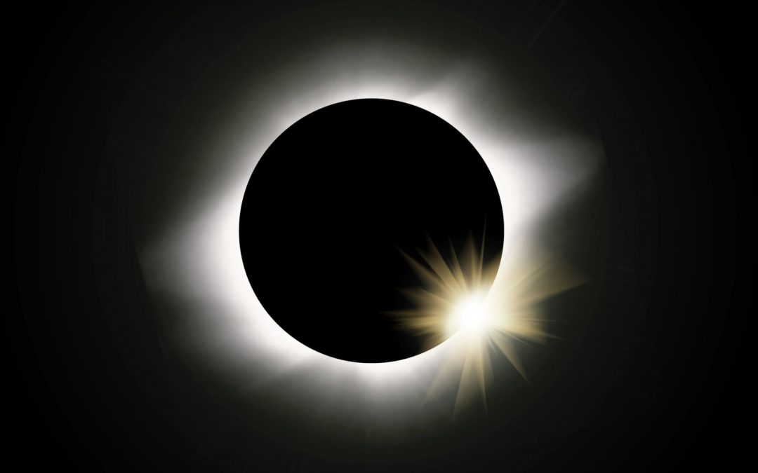 Safeguarding Animals During the Solar Eclipse