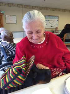 therapy dogs kennett Square