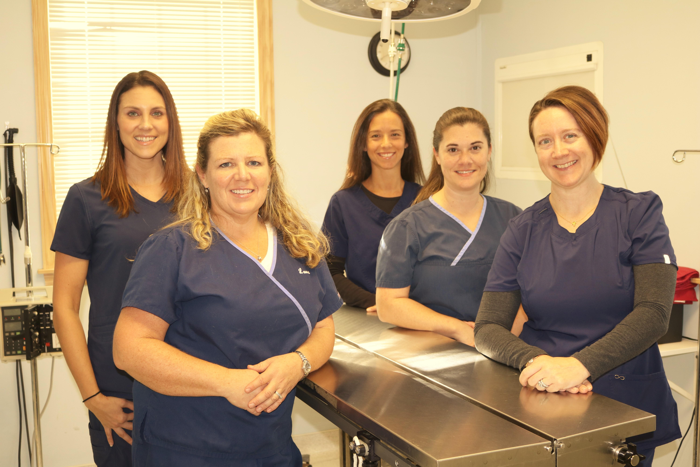 anesthesia girls 2
