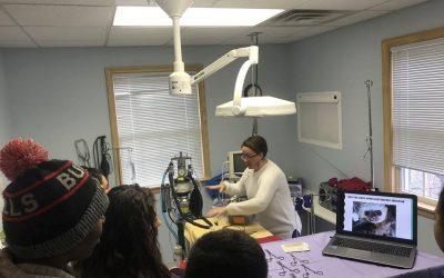 Longwood Veterinary Center Takes Time to Teach