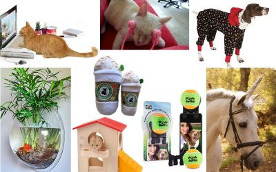 Hilarious Gifts for Your Furry Friends