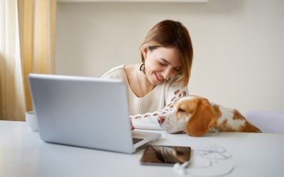 Telemedicine at Longwood Veterinary Center