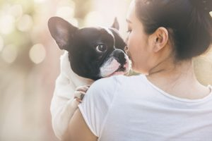 Spay and neuter for great benefits for your pet