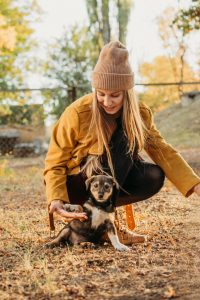 Pet socialization is most effective when started early